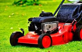 Frequently Asked Questions About Lawnmowers Start-Up Problems After Winter.jfif