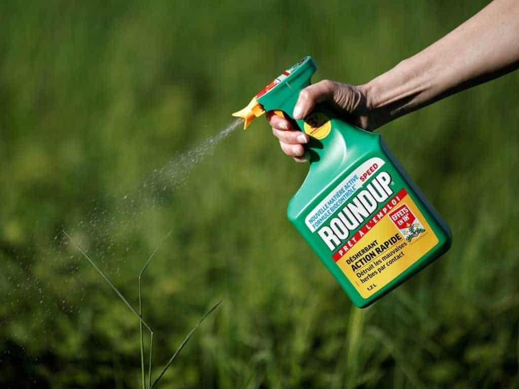 Using a Weedkiller