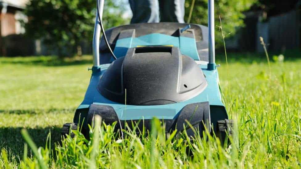 Can You Use An Electric Mower On Wet Grass