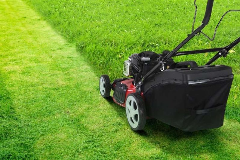 Does Mowing The Lawn Help The Grass Area Spread
