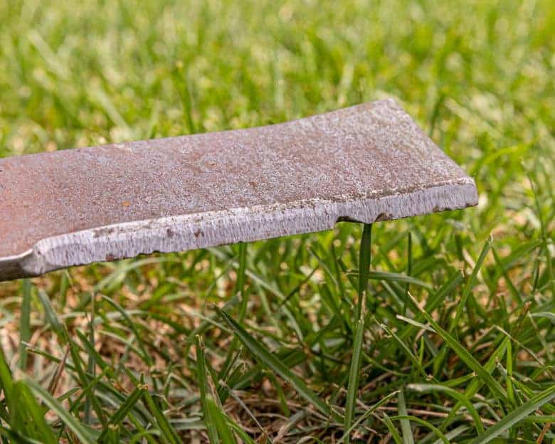 Hints that Your Mower Blades Are Blunt