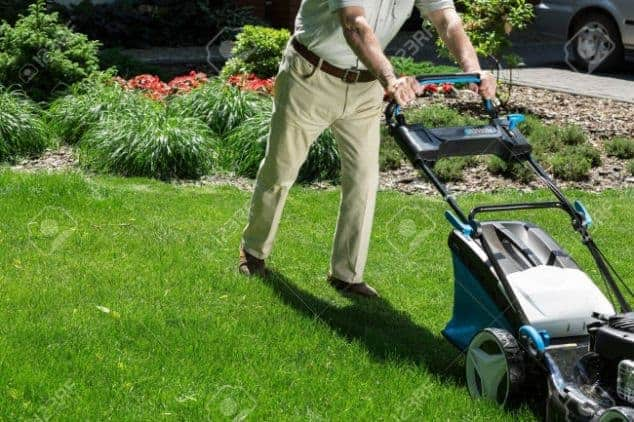 What are the Other Health Benefits of Mowing the Lawn